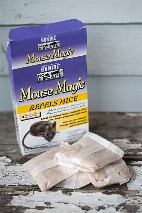 17 best ideas about mice repellent on diy mice