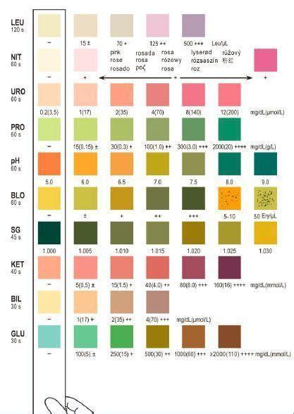 Verify Urinalysis Reagent 3 Parameter 10 Parameter 10sg Urinalysis Reagent Test Strips 50 Strips