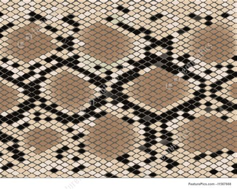 lozenge pattern texture lozenge pattern snake skin stock illustration i1567668 at