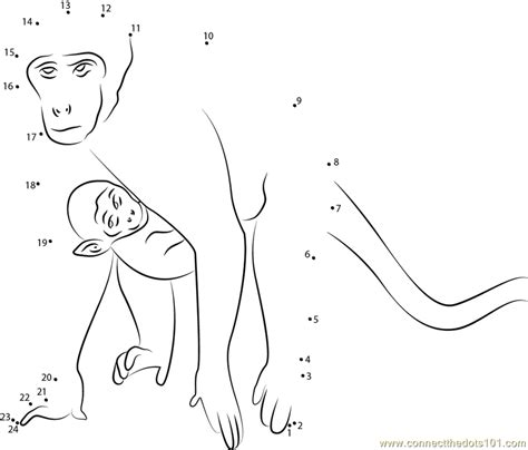printable dot to dot monkey monkey and son run dot to dot printable worksheet