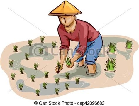 Plantation Home Plans vector of man farmer rice planting illustration of a