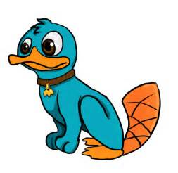 Baby Perry The Platypus Pictures » Home Design 2017