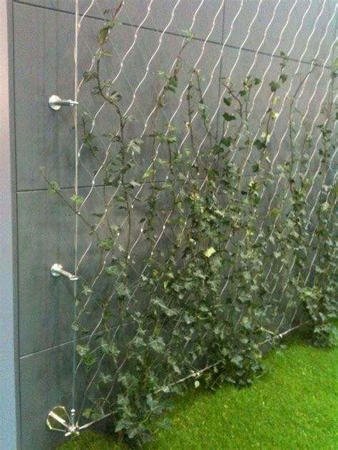 garden wire stainless steel wire used to support climbers for green