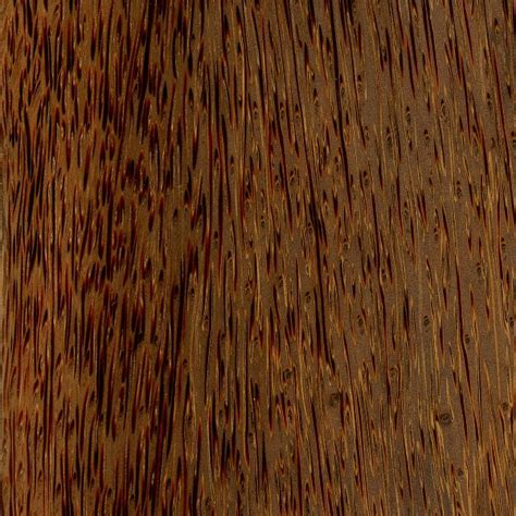 palm woodwork palm the wood database lumber identification monocot