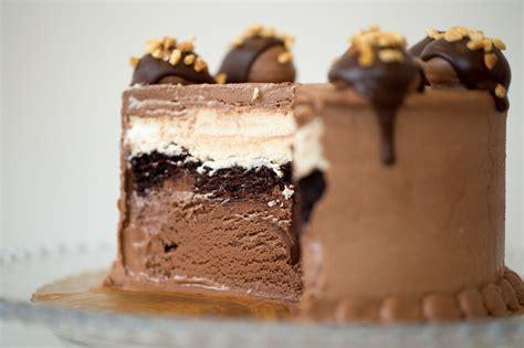 icecream cake custom cake fomu
