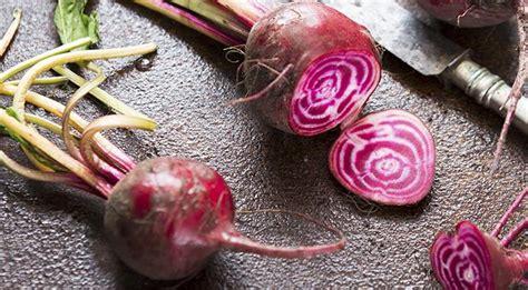 cucinare barbabietole rosse ricette barbabietole rosse come cucinare le barbabietole