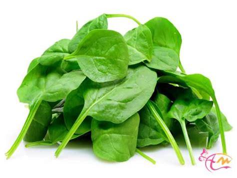 informasi penting untuk kandungan gizi bayam merah dan hijau