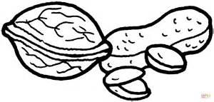 ausmalbild walnuss erdnuss und pistazien