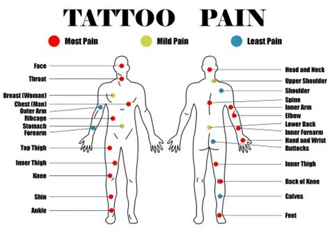 where is the least painful spot to get a tattoo least places to get a search