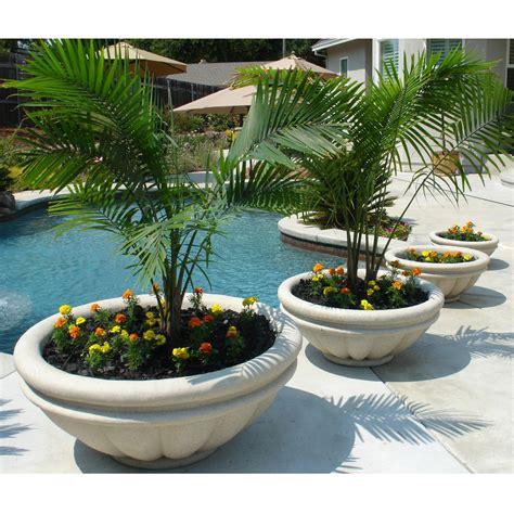 pflanzkübel mit sichtschutz fliesen idee balkon
