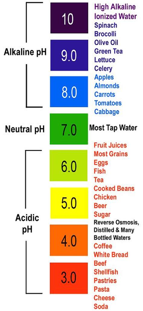 pH Levels and Cancer, Alkaline and Acidic Foods   Truth is Treason   Truth is Treason