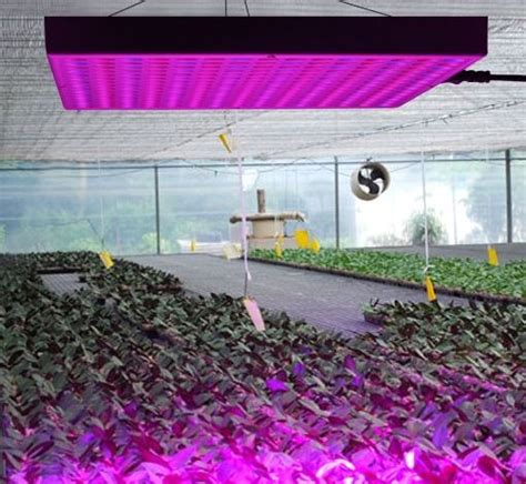 led grow light reviews high times 2016 erligpowht 45w led grow light review