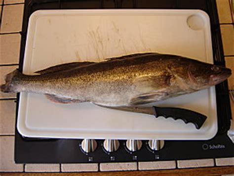 cuisiner sandre passionn 233 de p 234 che d 233 couper des filets de sandres