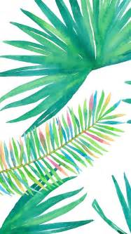 Pink And Green Bedroom best 25 palm background ideas on pinterest palm palm