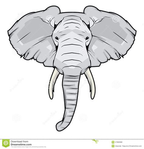 elephant head stock vector image 47882888