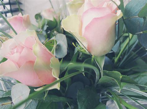 bosje bloemen ah de vegetari 235 r in de shoarmabar ikbenirisniet
