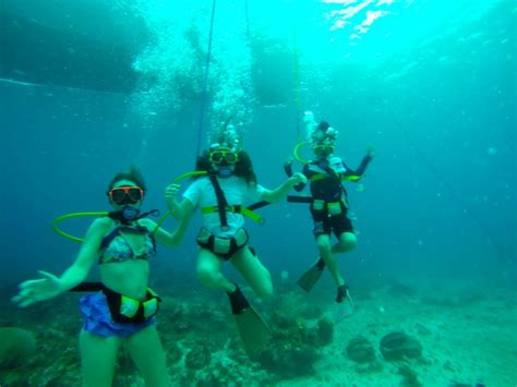 glass bottom boat turks and caicos beaches turks and caicos eden s expeditions
