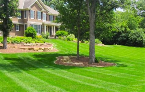 lawn services donarski lawn care and landscaping