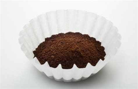 Coffee Filter they re handy for so much more than just your morning brew coffee lifehacks cleaning
