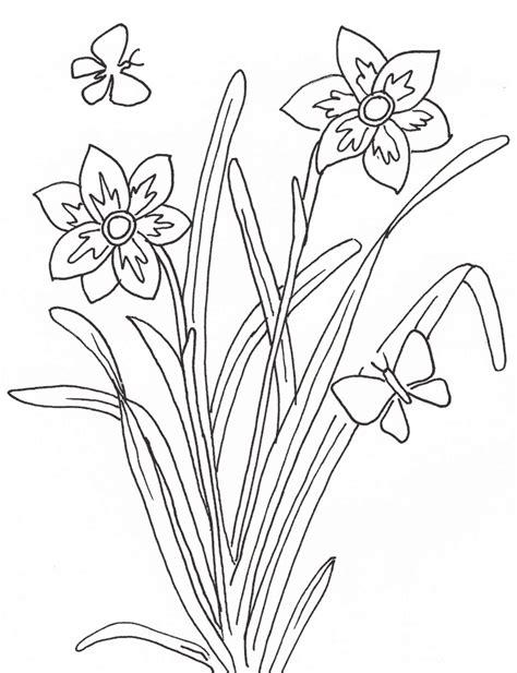 dibujos infantiles con animales flores y plantas en 193 rboles medicinales para pintar
