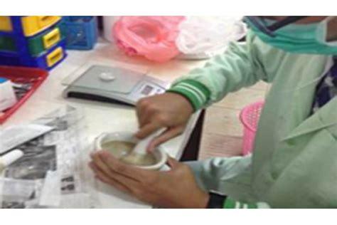 Cangkang Kerang Paket 12 Jenis satu harapan manfaatkan limbah cangkang kerang untuk