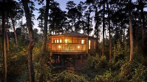 treehouse villas at saratoga springs where to stay on your next walt disney world vacation