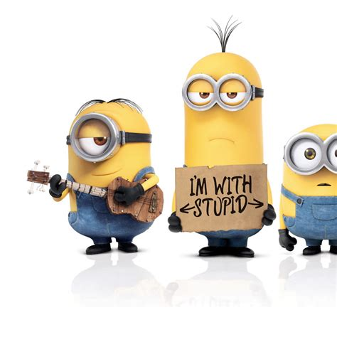 imagenes 4k minions download i m not stupid minions 2048 x 2048 wallpapers