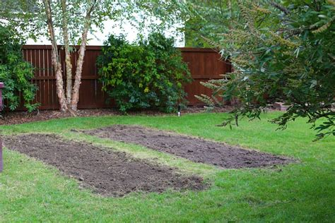 fall garden preparation fall soil preparation tips for gardens sand and sisal