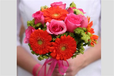 linguaggio dei fiori gerbera gerbera significato quale colore scegliere il linguaggio