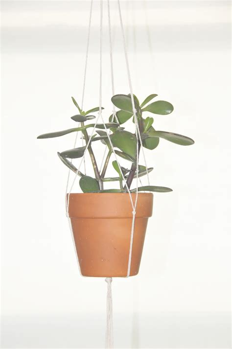 How To Make A Hanging Planter a daily something diy hanging plant holder