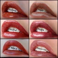 lipsense colors 78 best images about lipsense lip colors on