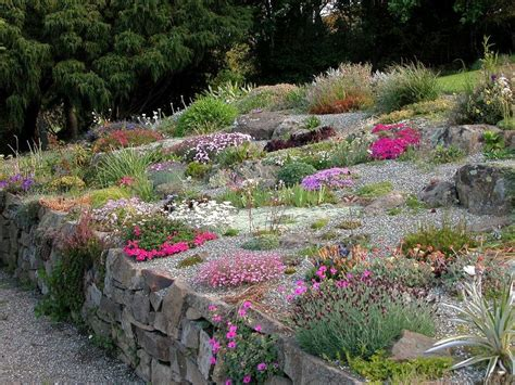 Plants For A Rock Garden Growing Alpine Plants Perennials And Miniature Bulbs