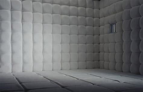 padded walls the padded cell secret storms