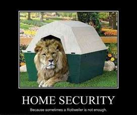 home funniest home security jokes memes pictures