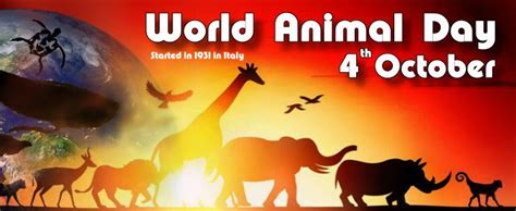 Essay On World Animal Welfare Day by World Animal Day 2017 2018 2019 Calendar With Holidays