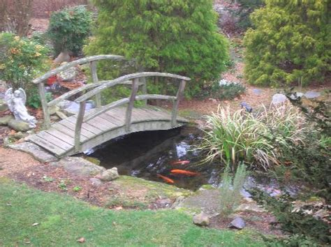 koi pond bridge the bridge over the koi pond picture of at cumberland