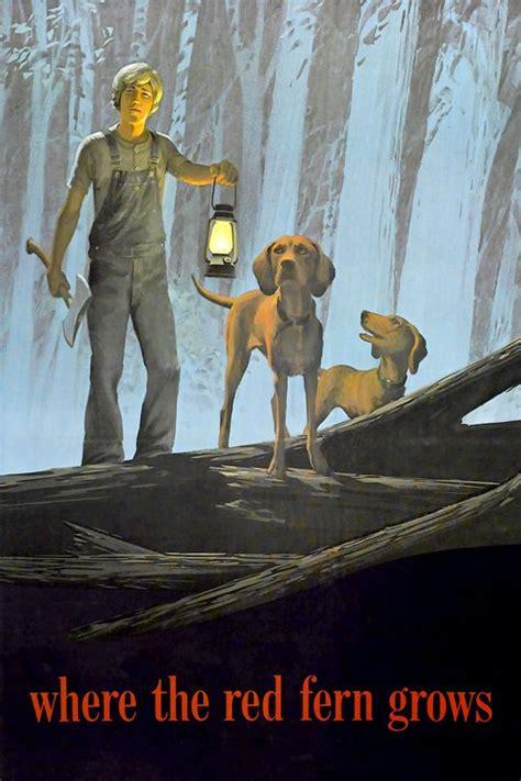 where the fern grows dogs where the fern grows 1974 the database tmdb