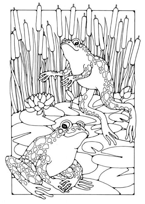 coloring pages frog and toad frogs colouring page free edupics adult colouring