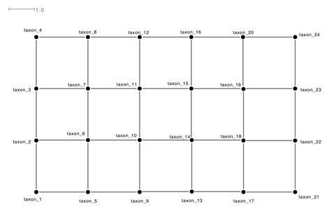 grid network pattern the genealogical world of phylogenetic networks networks