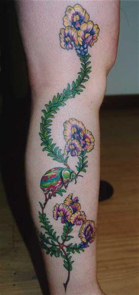 pultenaea strobilifera tatoo
