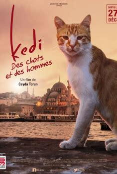 regarder vf oscar et le monde des chats film complet french gratuit oscar et le monde des chats streaming vf 2018 voir film hd