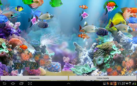 live wallpaper for pc aquarium aquarium live wallpaper hd aplicaciones de android en