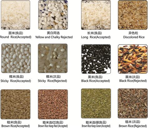 rice color sorter g series mini rice color sorter