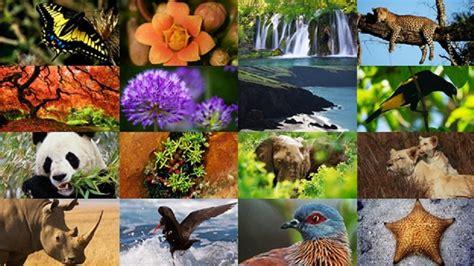 imagenes de recursos naturales vivos aprendizajes viajeros y biodiversidad