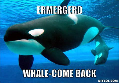 Whale Meme - whale come meme