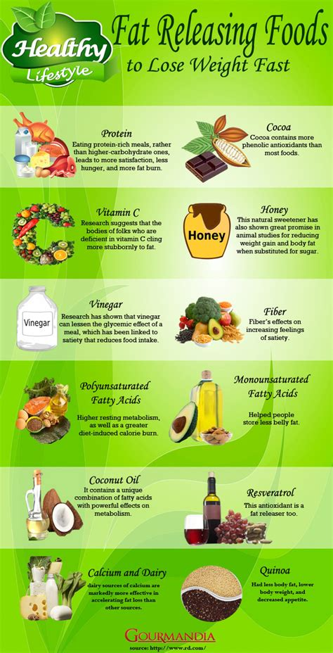 best food to lose weight fast foods to lose weight fast infographic