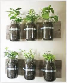 wall garden indoor indoor herb gardens and salad walls inspiration