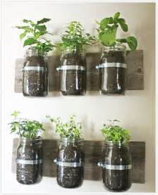 indoor wall herb garden kitchen herb gardens and salad walls my home rocks