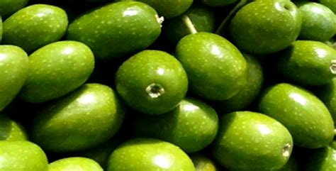 Minyak Zaitun K Link tips sehat dan merawat kecantikan menggunakan minyak