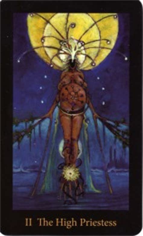 libro the mary el tarot the mary el tarot the tarot review
